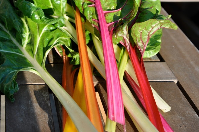 Swiss Chard, Ready for Lentils
