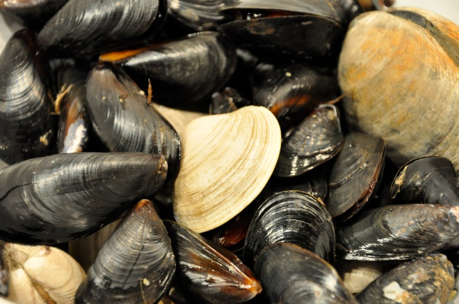 Penn Cove Mussels and Manila Clams