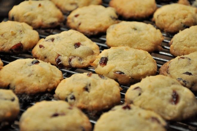 Cranberry Coconut Sugar Cookies