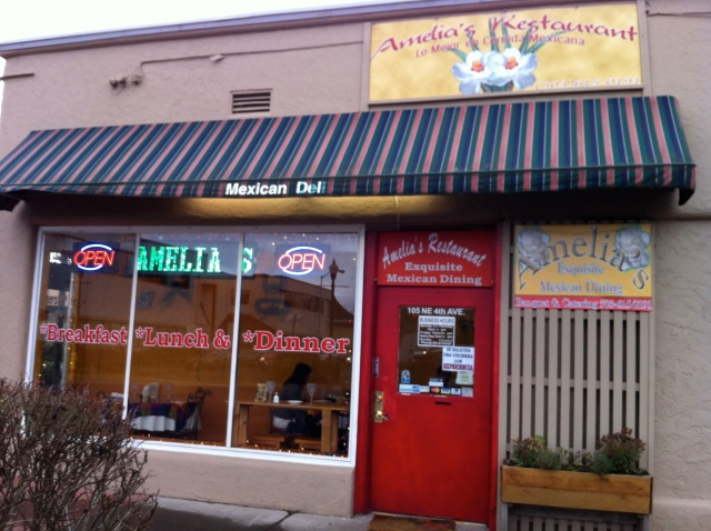 Amelia's Mexican Restaurant - Our Favorite Mexican Place in the World