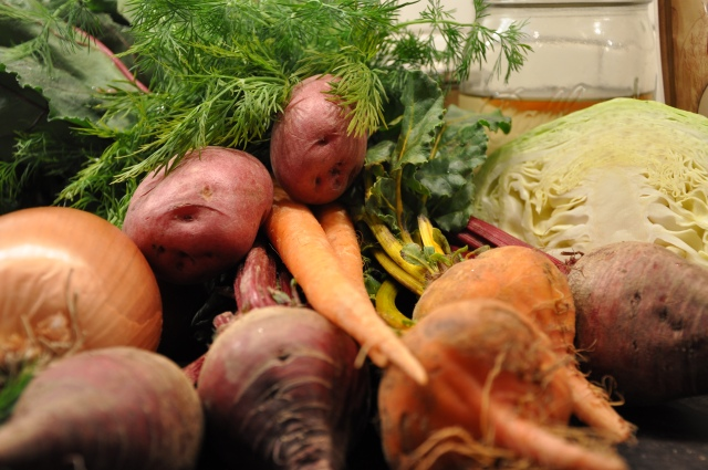 Borscht Ingredients - Beets, Carrots, Cabbage & Onions