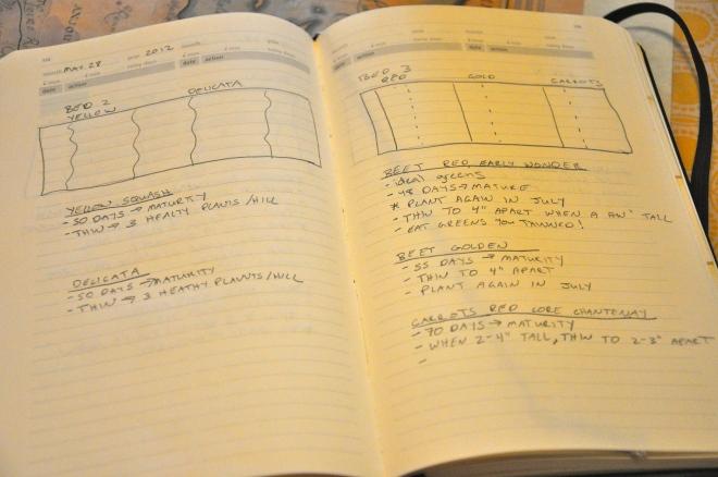 Crafty book drawings