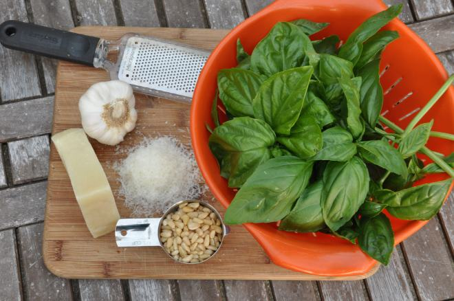 Fresh Pesto Ingredients