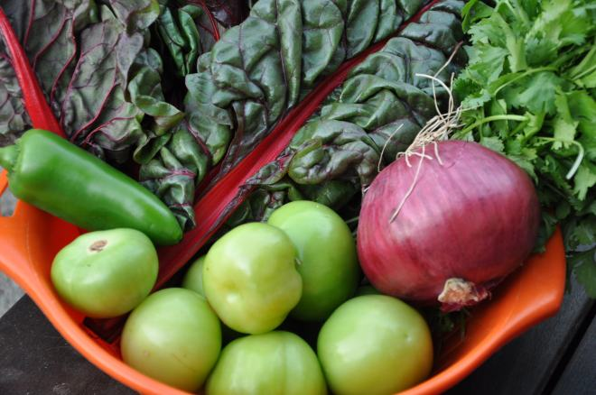 Bounty in a Basket (Swiss Chard, Tomatillos and More)