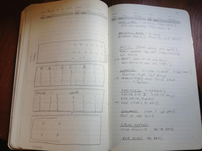 June's Garden Plan