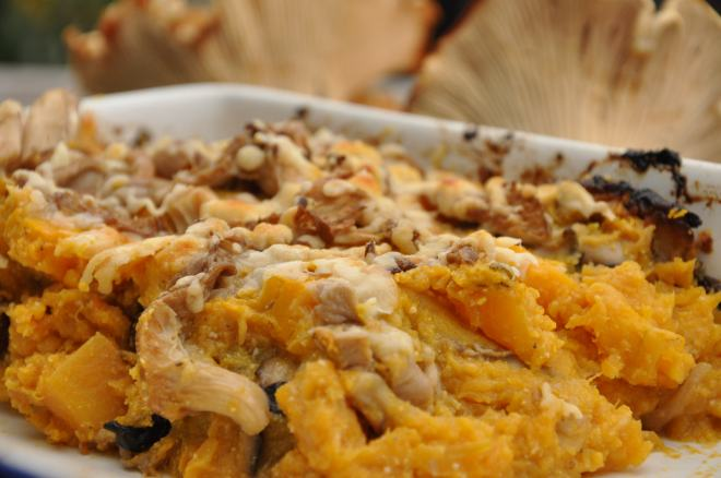 Butternut Squash Gratin with Wild Mushrooms