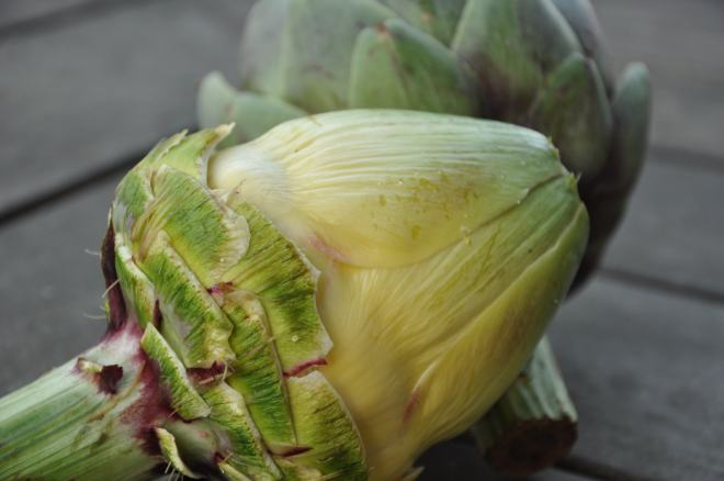 Freshly Peeled Artichoke