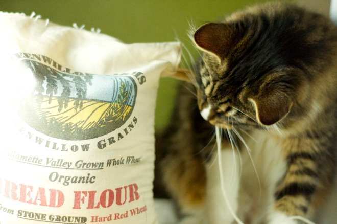 Carroll Inspecting Flour