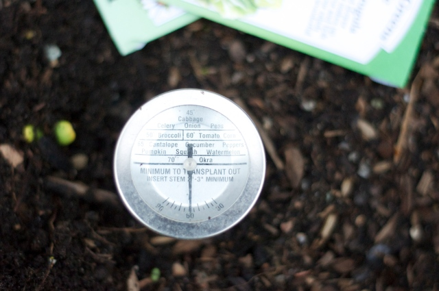 Soil Thermometer Says...